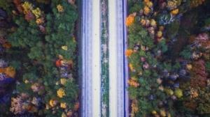 metodika-mapovani-porostu-u-dopravni-infrastruktury