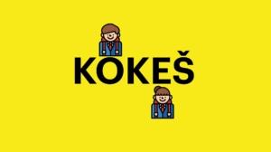 software-kokes-trial-pro-studenty-f